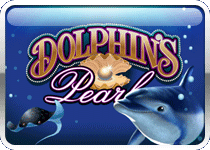 dolphins-pearl